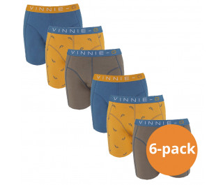 Vinnie-G Boys Kinder boxershorts Wakeboard 6-pack