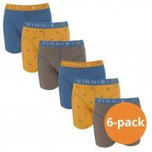 Vinnie-G Boys Kinder boxershorts Wakeboard 6-pack