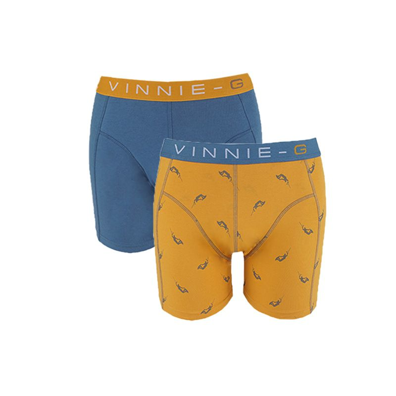 merk vinnie g boys inhoud 2 boxershorts kleur wakeboard uni blauw en orange print maten 128 134 140 146 152 ...